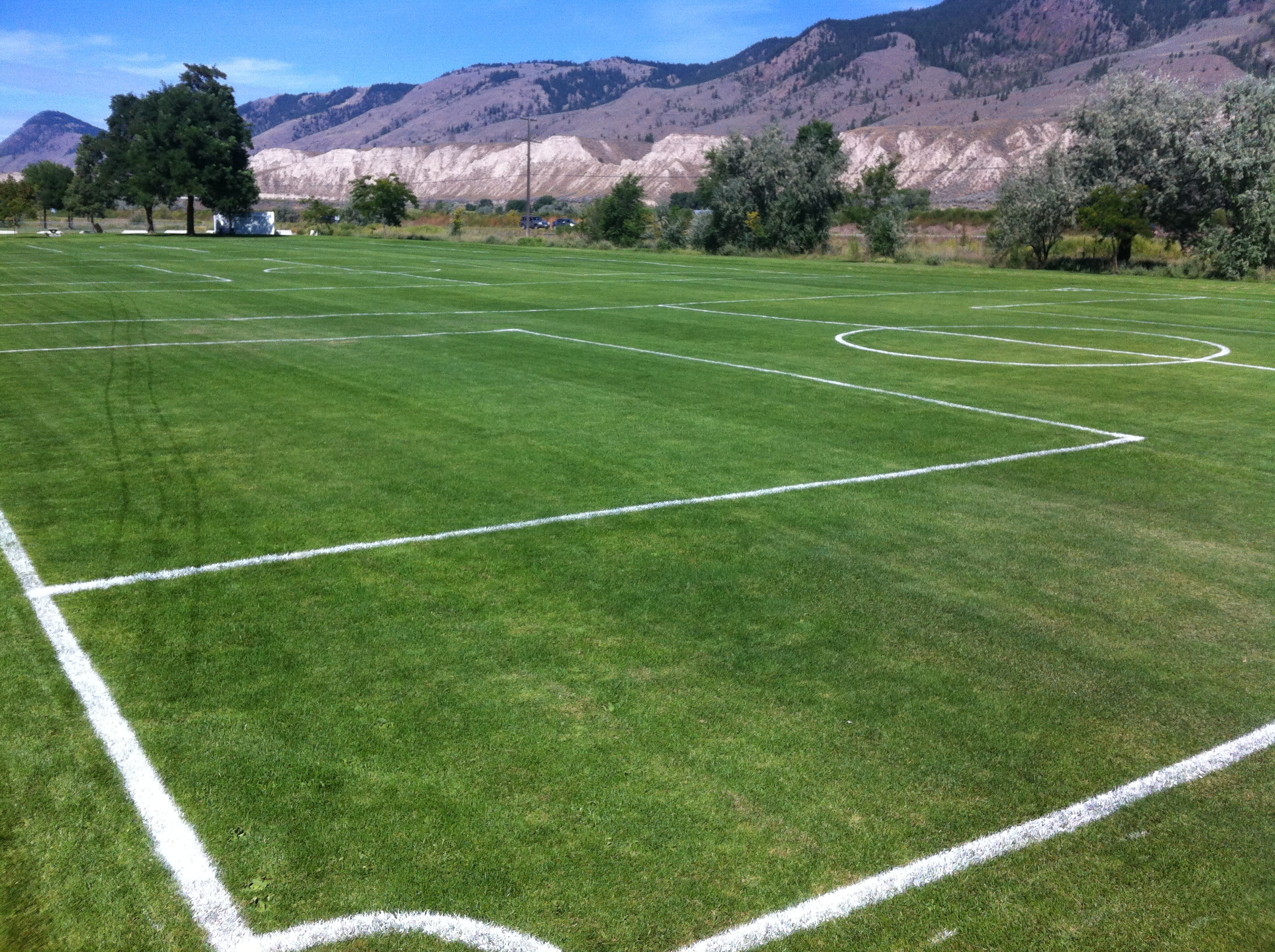kamloops field.jpg