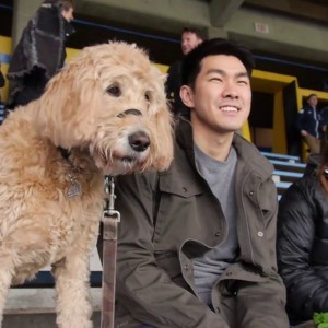 Bring your dog to a WFC2 match